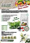 Zeolith Garten Pulver Bio entgiften dekontaminieren kaufen